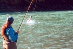 Terrace Fishing